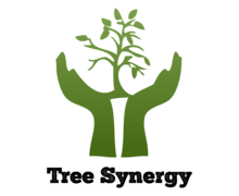 Tree Synergy Logaster logo
